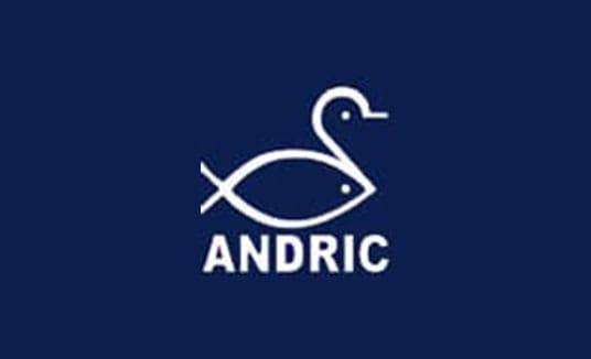StoqueMarket - Andric